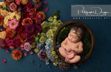 Photographic Designs for all your Tulsa Photography Moments
